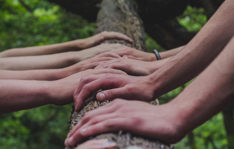 Miteinander im Dialog: Information und Emotion in der internen Kommunikation